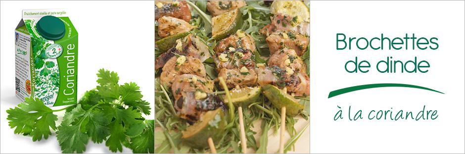 Darégal - recette - Brochettes de dinde à la coriandre