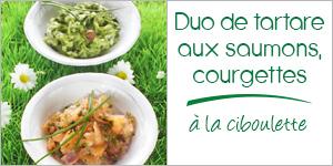 Darégal - recette - Duo de tartare aux saumons, aux courgettes et à la ciboulette