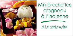 Darégal - recette - Mini brochettes d'agneau à l'indienne à la coriandre