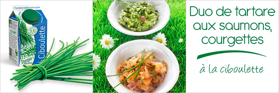 Darégal - recette - Duo de tartare aux saumons, courgettes et ciboulette