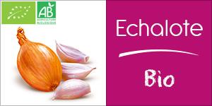 Echalote Bio