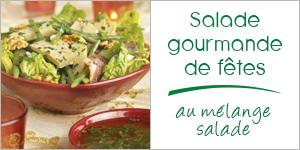 Salade gourmande de fêtes au mélange salade