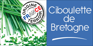 Ciboulette de Bretagne