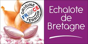 Echalote de Bretagne
