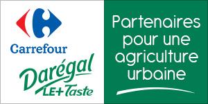 Darégal et Carrefour partenaires pour une agriculture urbaine